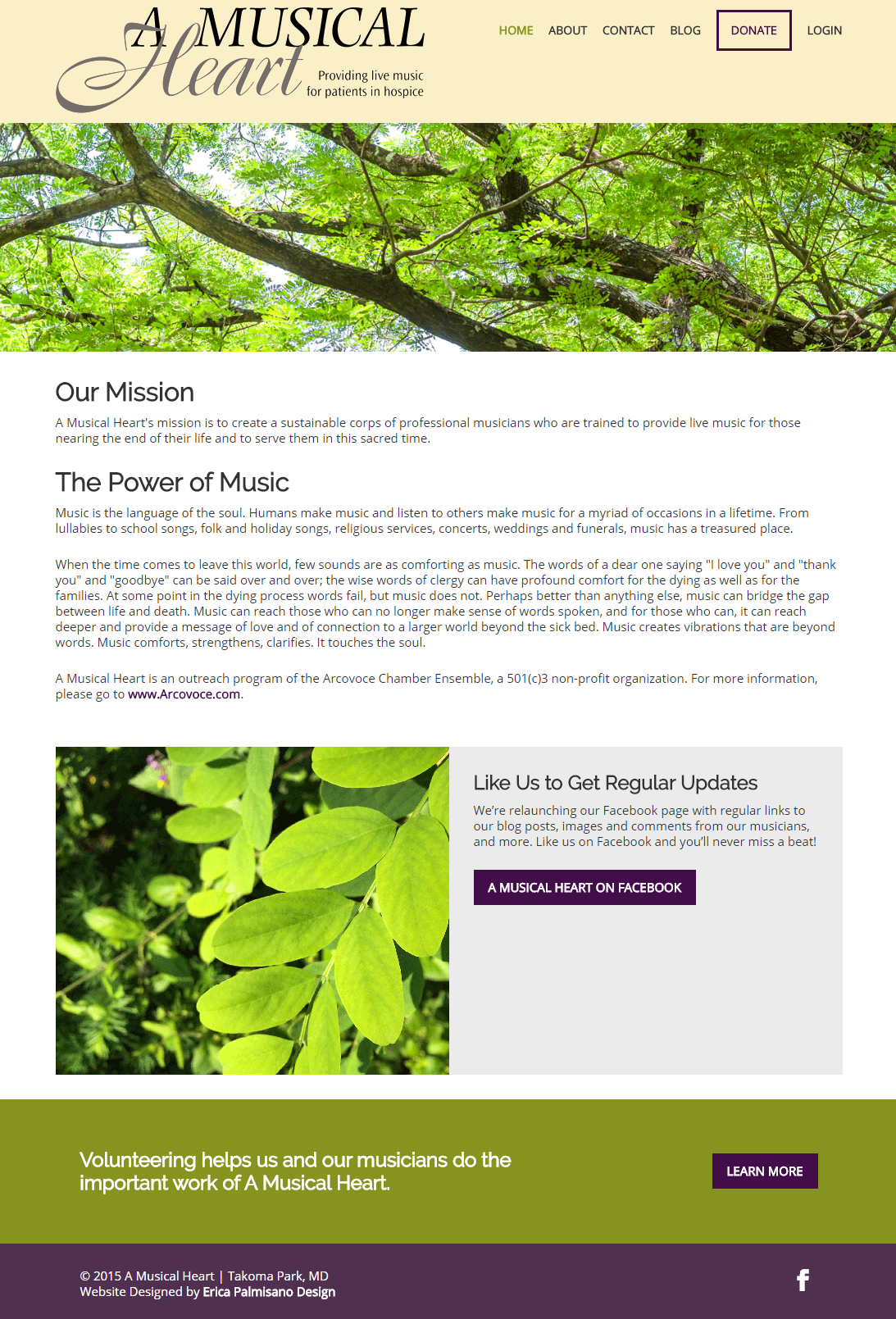 Nonprofit Website Redesign: A Musical Heart